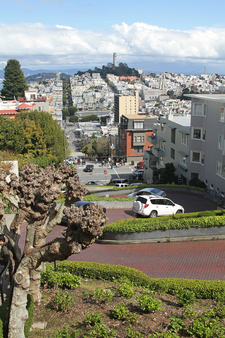 Switchback Section Of Lombard Street