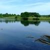 Longmoor Pool