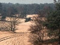 Loonse y Drunense Dunes