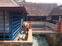 Dakshina Mookambika Temple North Paravur
