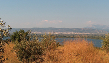 Lake Lysimachia