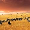 Provincia del Valle del Rift