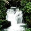 Maliau Basin Conservation Area - View