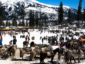 5 Nights 6 Days Shimla - Manali Honeymoon Tour Fotos