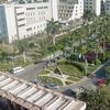 Mansoura Universidade