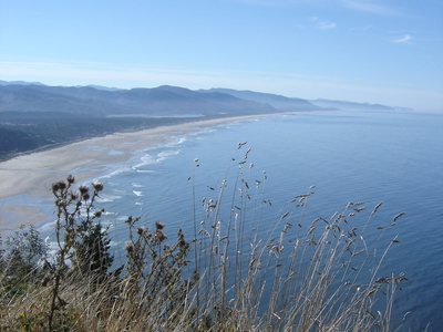 Manzanita Beach From Highway 101 Due North Of The Town.