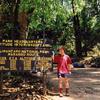 Marangu Gate - Hiking Kilimanjaro