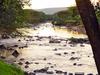 Mara River - Maasai Mara