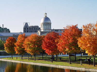 Bonsecours Market In Autumn
