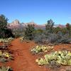 Margs Draw Trail