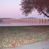 Market Street Bridge View At Sunrise - Harrisburg PA