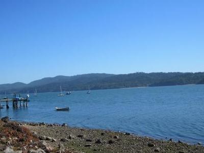 Marshall Shoreline