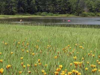 Martin Creek Lake SP