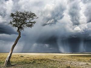 Masai Mara Luxury Offer Fotos