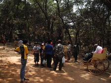 Matheran Trail Travel Options - Maharashtra - India