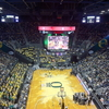 Matthew Knight Arena Interior