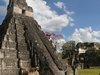 Mayan Temple In Tikal - Peten