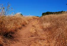 Mazatzal Divide Trail 23 - Tonto National Forest - Arizona - USA