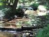McCalls Dam State Park