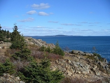 ME Acadia National Park View