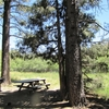 Meadows Edge Picnic Area