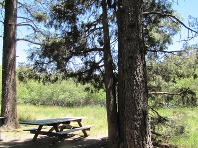 Meadows Edge Picnic Area