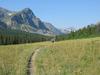 Medicine Grizzly Trail At Glacier - Montana - USA