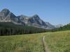 Medicine Grizzly Trail - Glacier - Montana - USA