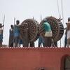 Mehdiana - Sikh Execution Death Wheel