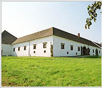 Meierhof-Luftenberg Castle In Ruins