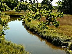 Merriland Río
