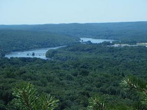 Meshomasic Forestal del Estado