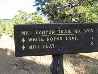 Mill Canyon Trail Pine Valley Mountain