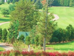 Minero Hills Family Golf, Llc