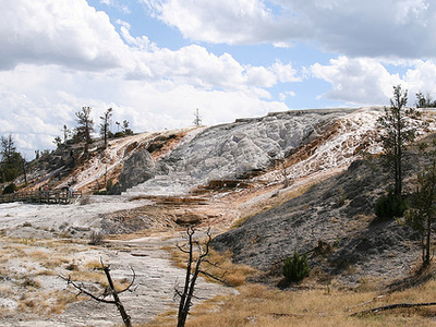 Minerva Terrace - Yellowstone - USA