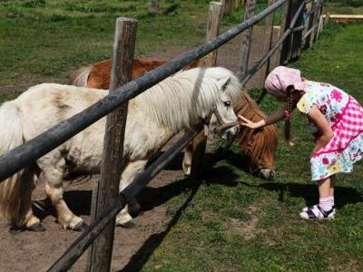Mini Zoo At Dobuļi