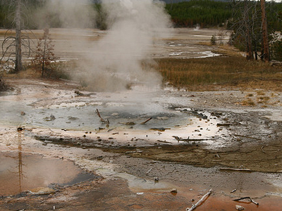 Minute Geyser - Yellowstone - USA