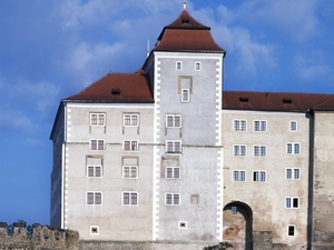 Mlada Boleslav Castillo