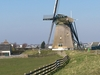 Windmill In Lisse
