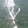 Bhagwan Mahaveer Sanctuary & Mollem National Park