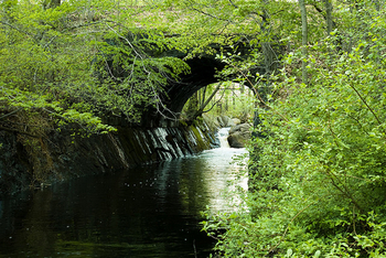 Monatiquot River