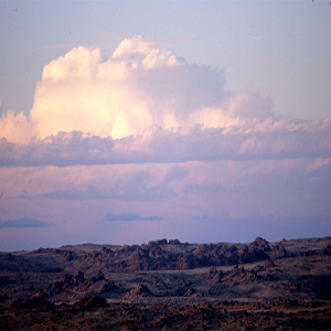 Mongolia Wildlife - Ikh Nart Nature Reserve