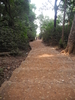 Monkey Point Trailview - Matheran - Maharashtra - India