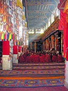 Monk Gathering In Drepung Monastery