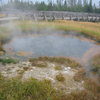 Monument Geyser Basin - Yellowstone - Wyoming - USA