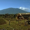 Mountain Baluran