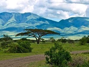 Masai Mara & Serengeti Safaris Tours