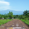 Mount Cameroon As Seen From Tiko