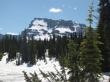 Mount Custer - Glacier - USA