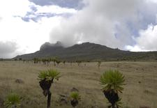 Mount Elgon Kenya